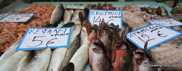 Fresh fish market in Corfu